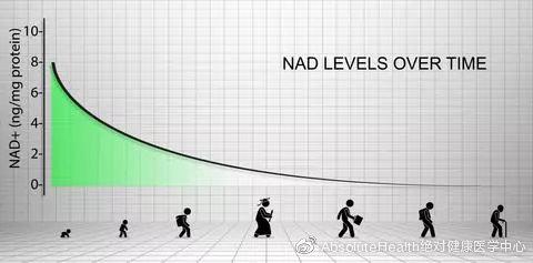 干细胞太贵?了解一下NAD+,帮助干细胞更新